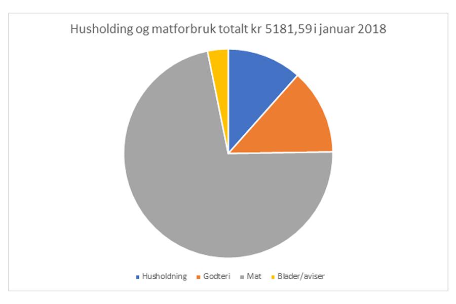 Prosjekt_Husholdning på lavbudsjett_helomvending